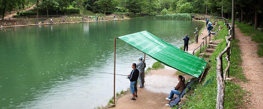 Pesca sportiva laghetto fonteviva ristorante pizzeria for Vendita pesci da laghetto online