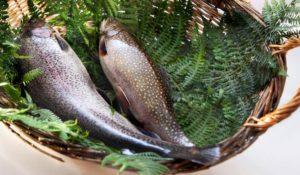 Consegna a domicilio pesce